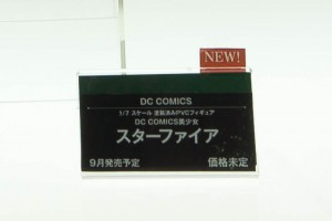 DSC02504