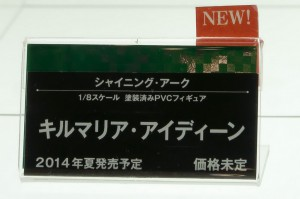DSC02513
