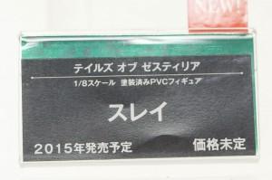 DSC07551