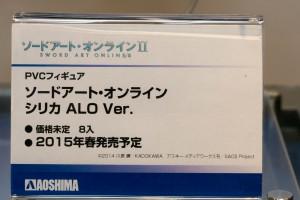 DSC06500