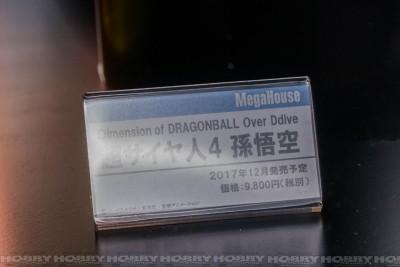 DSC00868