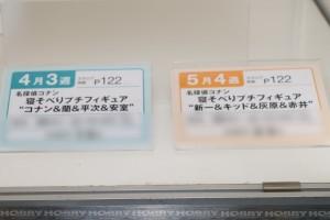 DSC08081