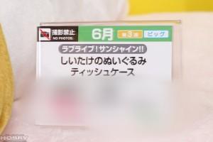DSC04957