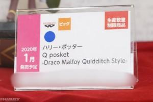 DSC03750