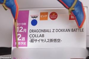 DSC04526